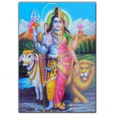 MI043 Магнит на холодильник Ардханарешвара (Шива-Шакти) 7х10см, винил