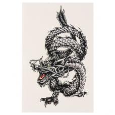 TTF010-29 Временная татуировка Дракон
